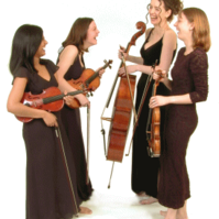 Strings Attached String Quartet