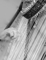 Glenda Harpist